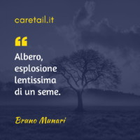 Aforisma Bruno Munari